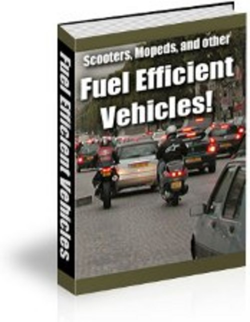 Product picture NEW! Fuel Efficient Vehicles with PLR